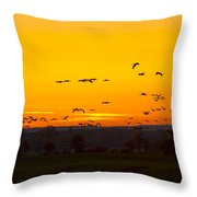 Cranes In The Evening Throw Pillow