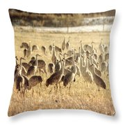Cranes In The Morning Mist Throw Pillow