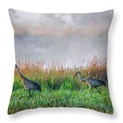 Cranes On Foggy Day Throw Pillow