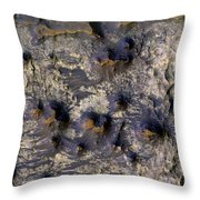 Crater In Mars Throw Pillow