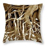 Crater Lake Tree Throw Pillow