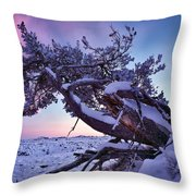 Craters Of The Moon Throw Pillow