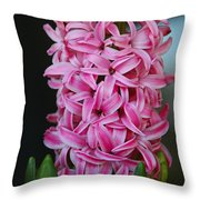 Crave The Crazy Throw Pillow