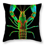 Crawfish In The Dark - Orivibsat Throw Pillow