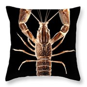 Crawfish In The Dark - Sepia Throw Pillow