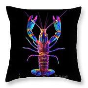 Crawfish Inthe Dark Allsat Throw Pillow
