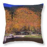 Crawford Notch Willey House Throw Pillow