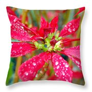 Crazy Dewy Red Flower Throw Pillow