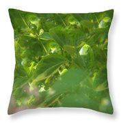 Crazy Floral Two  Throw Pillow