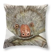 Crazy Two Toed Sloth Throw Pillow