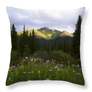 Crazy Wildflowers Throw Pillow by Barbara Schultheis