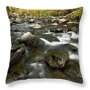 Crazy Woman Creek In Autumn Throw Pillow