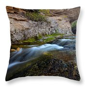 Crazy Woman Creek Throw Pillow