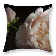 Cream And Pink Throw Pillow