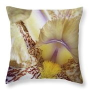 Cream And Purple Iris Throw Pillow