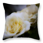 Creamy Dreamy Rose Throw Pillow