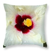 Creamy Hibiscus With Rain Drops Throw Pillow