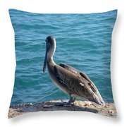 Creatures Of The Gulf - Lulled By The Waves Throw Pillow