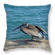 Creatures Of The Gulf - Scratch N' Sniff Throw Pillow