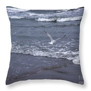 Creatures Of The Gulf - Tranquility Throw Pillow