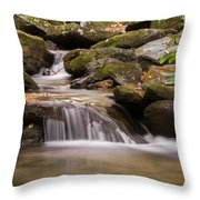 Creek 1 Throw Pillow