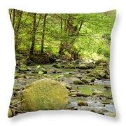 Creek 3 Throw Pillow
