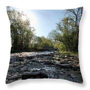 Creek And Bridge Throw Pillow