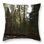 Creek And Giant Sequoias In Kings Canyon California Throw Pillow