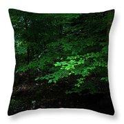 Creek Bank Throw Pillow