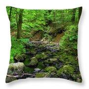 Creek Crossing In Ma Throw Pillow