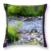 Creek Daisys Throw Pillow