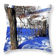 Creek Fenceline Throw Pillow