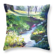 Creek Flow Throw Pillow