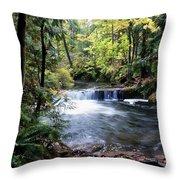 Creek, Frozen In Time Throw Pillow