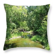 Creek In A Forest Throw Pillow