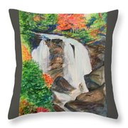 Creek In Autumn Throw Pillow