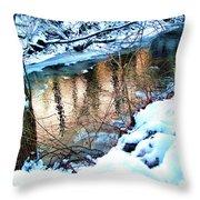 Creek In Bath Ohio Throw Pillow