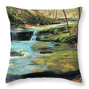 Creek In Dappled Light At Don Robinson State Park 1 Throw Pillow