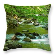 Creek In Great Smoky Mountains National Throw Pillow