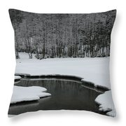Creek In Snowy Landscape Throw Pillow