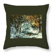 Creek In The Cold Throw Pillow