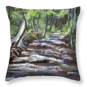 Creek In The Park Throw Pillow