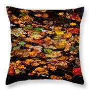 Creek Leaves Throw Pillow