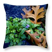 Creek Life Throw Pillow
