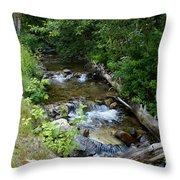 Creek On Mt. Spokane 1 Throw Pillow