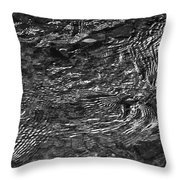 Creek Ripples B And W Throw Pillow