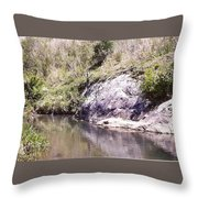 Creek Side Throw Pillow
