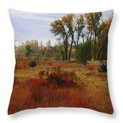 Creek Valley Beauty Throw Pillow