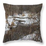 Creek Winding Through The Snow Throw Pillow