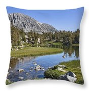 Creek With A View Throw Pillow